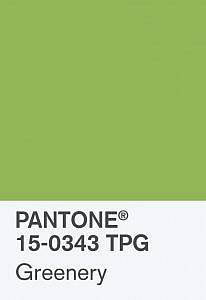 Pantone Colour of the Year Greenery, Pantone 15-0343 TPG Card